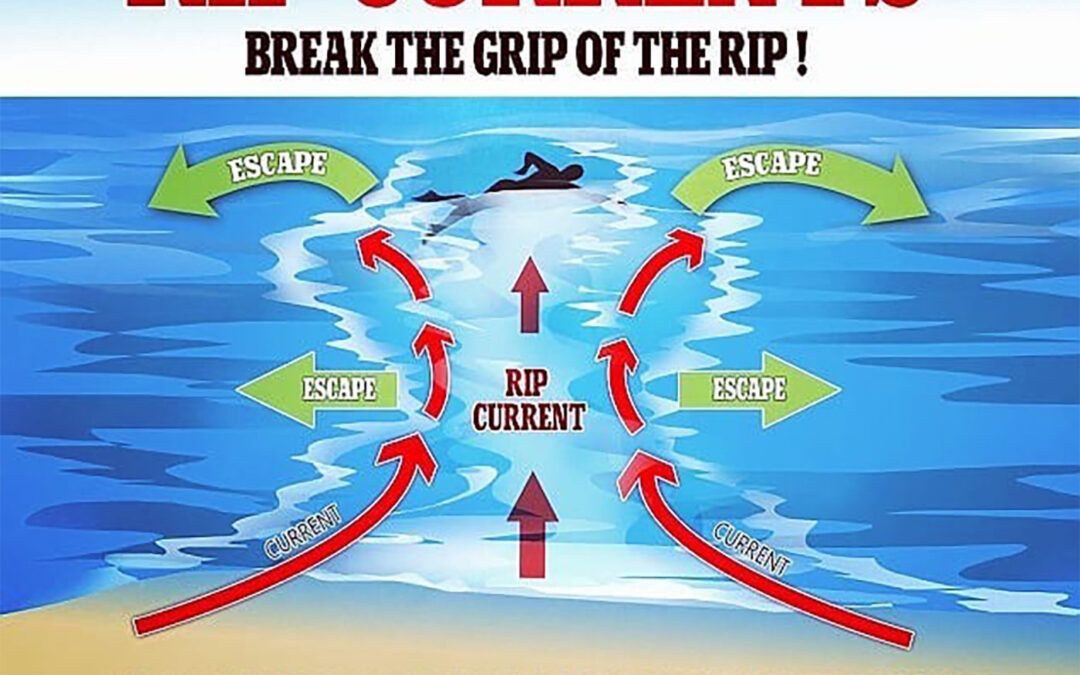 What are rip currents and why have they been so deadly?